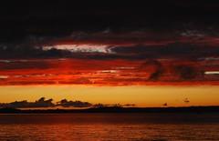 ... (gnulp) Tags: pyhäjärvi tampere hatanpää hatanpäänarboretum pilvet clouds auringonlasku