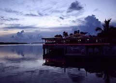 Still Waters (PelicanPete) Tags: sunset afterglow serene loreleicabanabar fun restaurant summer2018 islamoradaflorida usa unitedstates bay palm tropical serenity silver sea water smooth sky boat dusk