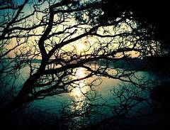 The Sky's Gone Out (G.Billon) Tags: mobilephone cameraphone iphoneography iphoneografy iphone shadow ombre landscape seascape bretagne bzh saintlunaire gbillon theskysgoneout bauhaus