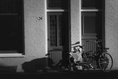 Bicicleta. (Miguel Ángel López Gil) Tags: blackwhite blancoynegro panasonicgx7 amsterdam holanda bicicleta urbana panasoniclumix1235mm