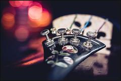 Inlaid tail piece and adjusters (G. Postlethwaite esq.) Tags: canon40d canonefs60mmmacro dof lightroom macro viveza adjusters bokeh bridge closeup depthoffield inlay motherofpearl musicalinstrument photoborder primelens selectivefocus strings tailpiece violin