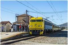 Tren de los 80 en El Espinar (440_502) Tags: 269 604 tren de los 80 segovia el espinar madrid chamartín 69604 gata montés gato aaf aafm asociación amigos del ffcc ferrocarril feeaf federación española