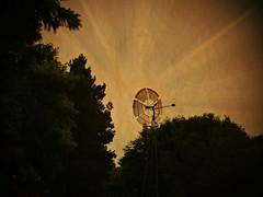 Awaiting the Wind (Dave Linscheid) Tags: windmill tree twxture textured vosspark butterfieldthreshingbee butterfieldsteamandgasengineshow butterfield watonwancounty mn minnesota usa memories nostalgia sky picmonkey