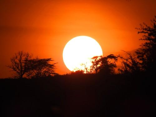 9964ex  Sunset -- Lake Nakuru  **Explore**