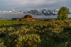 Sunrise of historic Moulton Barn in the Grand Teton National Park, Wyoming, USA. (tvrdypavel) Tags: architecture background barn beautiful blue entrance famous farm fence field grand grass heritage historic hole jackson landscape log mormon morning moulton mountain mountains national nature old outdoor park photography place ranch range row scenery scenic sky snow summer sunrise teton tetons travel usa west western wild wood wooden wyoming