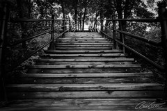 Stairway to heaven... (corineouellet) Tags: stairs stair stairway amazingshot pointofview pointdevue pov canonshot canonphoto canoncanada canon montréal quebec canada noiretblanc blackandwhite landscape nature bnw