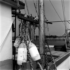 Bumpers and Rigging (bac1967) Tags: ilfordpanf50 ilford ilfordfilm ilfordpanfplus50 blackandwhite blackandwhitefilm blackwhite black white bw monotone monochrome beerenol beerol pabstblueribbonbeer pabst pabstblueribbon caffenol oregon charleston charlestonor marina charlestonmarina fishing oregoncoast pacificnorthwest pnw pacificcoast weathered decay nautical rigging bumpers fishingboat