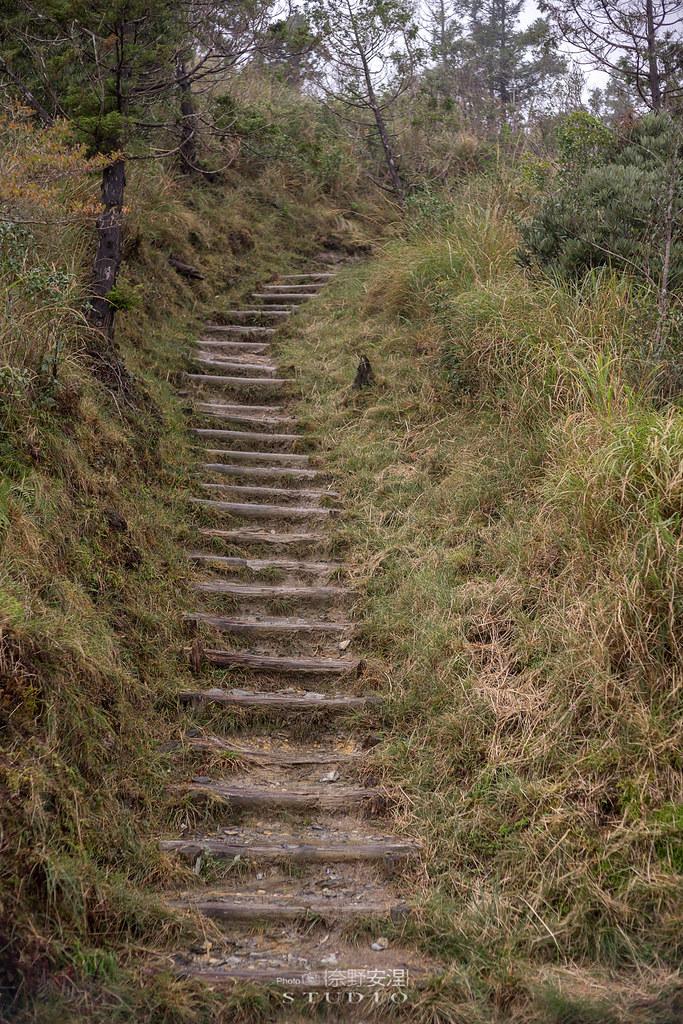 太平山翠峰湖環山步道 |走在泥濘的道路上,只為途中美景 | 宜蘭大同鄉26