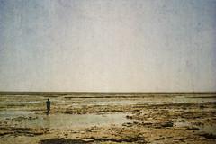 not on the beach (Ben Bill) Tags: hss sliderssunday texture