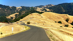 Mount Hood (Steven P. Moreno) Tags: santarosa california usa nature stevenpmoreno sonomacountyregionalparks outdoorphotography stevenmorenospix hiking camping travelpictures galaxys9