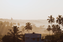 India-2018-5056 (Mariss Balodis) Tags: india asia canon coast colors culture endless exotic explore holiday kerala landscape local muslim namaste nature photography south summer travel trip tropics vacation tropical palm tree coconut hindi sky village paradise adventure wallpaper naturesurfing wave surfer ocean atlantic water saltwater surf surfinglife beach watersports sandy salty adrenaline extreme blue plage playa action movement glassy spot motion live kovalam