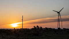 Sunday morning (Cajofavi) Tags: sky landscape sunrise cloud fs180916 söndag sunday fotosondag sweden öland bläsinge vindkraftverk windturbine soluppgång sea 日の出