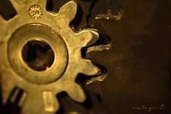 #MacroMonday #Cogwheel (Mategosa) Tags: cogwheel macromonday
