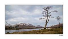 5D4_1395 (Paul Compton PDphotography) Tags: landscapephotography pdphotography landscape photography scotland seascape castle landscapelovers landscapecapture landscaphotography outdoors outdoorphotography reflections reflection snow well being hiking walking glencoe mavic