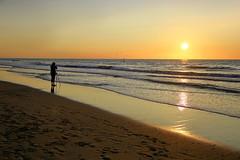 Die Lichtbildnerin (ploh1) Tags: meer nordsee frau person mensch alleine einsam fotografin niederlande holland scheveningen denhaag thehague wellen weite silhouette schatten sand fusspuren gegenlicht