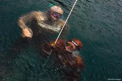 Apneisti stile macchiaioli (66Colpi) Tags: apnea lagodorta trattieniilfiato acqua lago pioggia macchiaioli risalita corda maschera gianlucagenoni