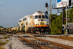 SunRail 103 | MPI MP32PH-Q | CFRC Subdivision (M.J. Scanlon) Tags: business cfrc cfrc103 csx csxsanfordsubdivision csxtransportation csxt canon capture cargo centralfloridarailcorridor commerce commuter digital eos engine fdot florida floridadepartmentoftransportation freight gp40 gp40wh2 haul horsepower image impression landscape locomotive logistics mjscanlon mjscanlonphotography marc53 mp32phq mpi mpimp32phq marylandrailcommuter merchandise mojo move mover moving orlando outdoor outdoors p311 passenger perspective photo photograph photographer photography picture rail railfan railfanning railroad railroader railway scl1632 scanlon steelwheels sunrail super track train trains transport transportation view wow ©mjscanlon ©mjscanlonphotography sunrail103