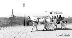 Horse & Carriage at the Old Venetian Harbour, Chania (Heathcliffe2) Tags: horse carriage ride pony trap venetian harbour chania old town crete greece lighthouse egyptian lamo lamppost sea greek tourist tourism visit wheels passengers driver working animal mammal equine blinkers white grey monochrome