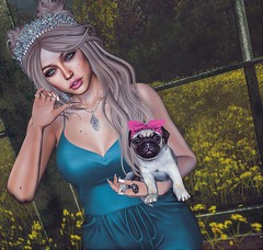 My Sweet Little Friend (Sparkle Mocha) Tags: {limerence} siara groupgift justice romper black bantam puggy pug headband enfant terrible cae necklace firestorm slhair slfashion maitreya secondlife avatar mesh puppy dog bow fameshed