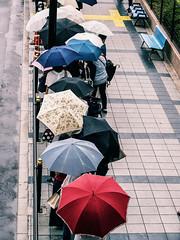 The colorful rainy day (Kazunori Torige) Tags: japan omd olympus osaka