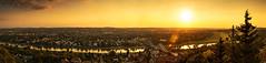 Dresden Loschwitz - Sunset Panorama (FH | Photography) Tags: dresden loschwitz skyline sunset panorama elbe horizont sachsen deutschland stadt blaueswunder brücke city häuser gebäude immobilien architektur infrastruktur wahrzeichen europa stimmungsvoll elbwiesen himmel fluss wasser lensflares lensflare licht sonne abends idylle romantisch