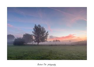 sunrise in flanders fields.
