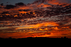 Paint Brushed Sky (O.S. Fisher) Tags: arizona broken clouds landscape layered mountains silhouette sky sunrise sunset trees