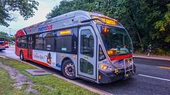 WMATA Metrobus 2014 NABI 42 BRT Hybrid #8087 (MW Transit Photos) Tags: wmata metrobus nabi 42 brt hybrid