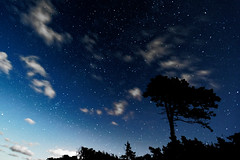 Starry night over the Baltic Sea (h3rmes) Tags: sky stars clouds night longexposure space gwiazdy niebo długaekspozycja wicie balticsea poland polska seashore
