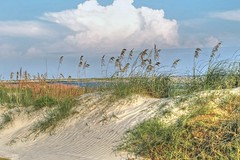 Dunes from the Fairway-The Ocean Course-Kiawah Island SC 9148 (Emory Minnick) Tags: sanddunes theoceancourse kiawahislandgolfresort usa