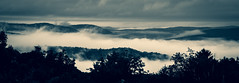 Moody Morning (RWGrennan) Tags: landscape clouds mountain moody monochrome mono black bw rwgrennan rgrennan ryan grennan nikon d610 morning fog valley newyork massachusetts hancock new lebanon dark rural contrast outside outdoors trees taconic mountains air berkshire county view wow cloud summer