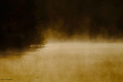 Aurore (jpto_55) Tags: matin aurore brume lac etang lacsoula plaisancedutouch hautegaronne france xe1 fuji fujifilm fujixf55200mmf3548rlmois