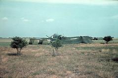 Ju 86 JEC 02398 (ww2color.com) Tags: junkers ju86 luftwaffe