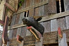 INDONESIEN; SULAWESI, Tanah Toraja , in Lemo, Giebelschmuck an einem   tongkonan ,  die Schnitzereien symbolisieren den Wohlstand der Familie,  17629/10638 (roba66) Tags: sulawesi urlaub reisen travel explore voyages rundreise visit tourism roba66 asien asia indonesien indonesia insel celebes island île insulaire isla toraja tanahtoraja volk brauchtum tradition bauwerke «torayavillage» tongkonan «ricestore» reisspeicheralang ahnenkult mythen bauwerk architektur architecture arquitetura building bau façade platz places historie history historic historical geschichte skulptursculpture relief urban giebel holzschnitzerei