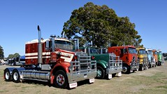 Kenworth old girls (quarterdeck888) Tags: trucks photos truckphotos australiantrucks outbacktrucks workingtrucks primemover class8 overtheroad interstate frosty quarterdeck jerilderietrucks jerilderietruckphotos flickr bdoubles lorry bigrig highwaytrucks interstatetrucks nikon truck kenworth kenworthclassic kk kenworthclassic2018 truckshow truckdisplay workingclasstrucks noprizes cfl mackmuncher sar kenworthsar clevland clevlandfreightlines