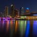 Tampa Blue Hour Tight