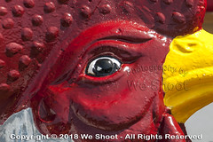 Eye Of The Stone Chicken (weeviltwin) Tags: summer chicken concrete detail detailed eye paint painted poultry red rooster statue stone wa washington white winlock yellow weshootcom