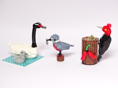 Southern Cone Birds: Black-necked Swan, Ringed Kingfisher and Magellanic Woodpecker (LuisPG2015) Tags: southerncone magellanicwoodpecker ringedkingfisher blackneckedswan southamerica birds bird lego