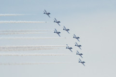 Flock1 (NCainDesign) Tags: toronto canada air show airshow plane jet flight formation pilot snowbird snow bird sky fly tricks smoke tail uniform unity airforce force power curves group solo duo two aircraft cne exhibition fleet aviation