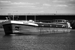 C o n d o r (b_kohnert) Tags: bw blackandwhite monochrome schwarzweis ship schiffe