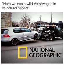 Wild Cars (partsavatar) Tags: cars classic vintage autoparts carparts canada vancouver montreal toronto volkswagen carmemes memes mechanichumor