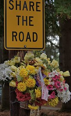 Share The Road (Scott 97006) Tags: flowers sign plea message
