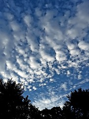 First Morning of Autumn (zicari.john) Tags: earlymorning morning sky clouds autumn fall earlyfall yorkmaine maine southernmaine newengland blue