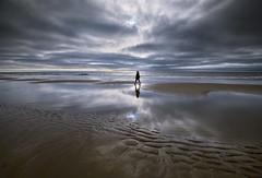 Walking during the ebb (Julysha) Tags: camperduin ebb beach acr northsea strand 2018 sea summer thenetherlands noordholland august nikon d850 people nikkor1635vr tiffenhtndgrad sky clouds reflection water