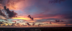 My Florida (DonMiller_ToGo) Tags: cloudsonfire cloudporn sunsetmadness sunsets nature goldenhour aerial florida mavicpro drone panoramic djimavicpro outdoors sunsetsniper panorama clouds sky panoimages3 venice unitedstates us