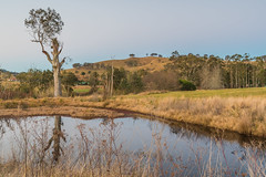 Out in the Country (Merrillie) Tags: landscape sunset gumtree australia reflections rural hill newsouthwales dusk dam trees country scenery tree acreage gresford farm water countryside twilight property