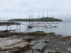 Shoreline at Bar Harbor, Maine (` Toshio ') Tags: toshio barharbor maine usa ship tallship shoreline lowtide pier island harbor water iphone boat fishingboats seaweed