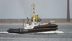 Multratug 31 (kiekjesdief.nl/schepen) Tags: multratug31 damen asd tug 3212