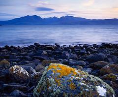 Arran Seascape with Lichens º» (CactusD) Tags: arran seascape lichens dunagoil dunagoilbay scotland bute argyllandbute dusk detail greatbritain great britain nikon d800e fx uk unitedkingdom gb landscape film 5x4 4x5 details fuji fujichrome velvia velvia50 largeformat large format digitized linhof technikardan tks45 s45 schneideraposymmarmc150mmf56 150mm f56 schneider aposymmartilt shift tiltshift pce 85mmf28pce 85pce 85mm