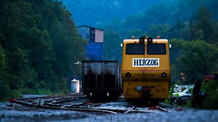 Look What I Found (nsrailfan82) Tags: middlesboro kentucky ky herzog ns norfolk southern coal mow